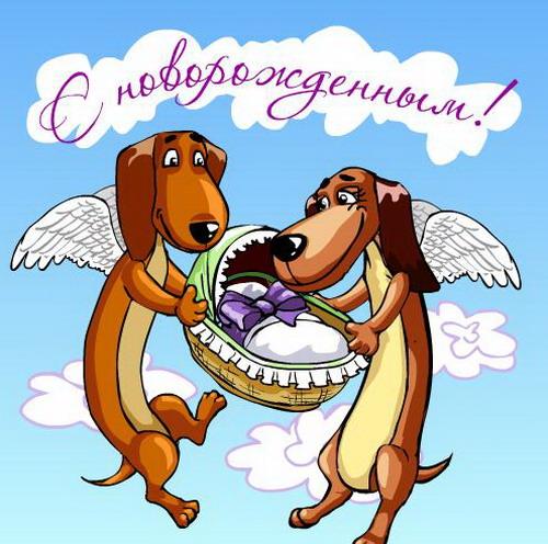 Поздравление щенка